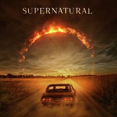 Télécharger Supernatural, Saison 15 (VOST)