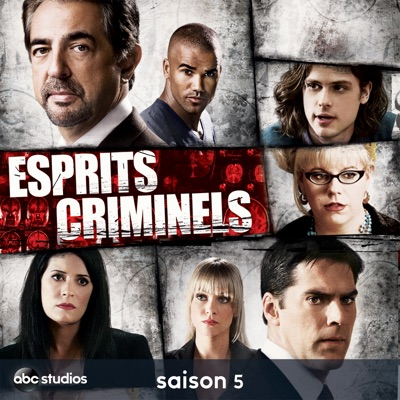 t l charger esprits criminels saison 5 23 pisodes. Black Bedroom Furniture Sets. Home Design Ideas