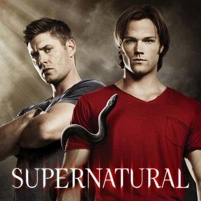 Supernatural, Saison 6 (VF) torrent magnet