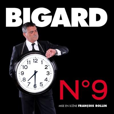 N°9 de Bigard torrent magnet