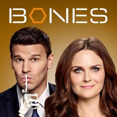 Bones, Saison 9 (VF) torrent magnet