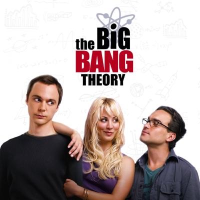 Jaquette The Big Bang Theory, Saison 1 (VF)