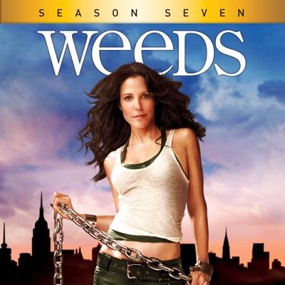 Weeds, Season 7 torrent magnet