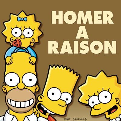 Les Simpson: Homer a Raison torrent magnet
