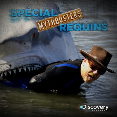 Mythbusters : spécial requins torrent magnet