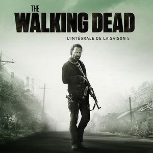 The Walking Dead, Saison 5, Partie 1 (VOST) torrent magnet