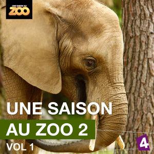 Une saison au Zoo, Saison 2, Vol. 1 torrent magnet