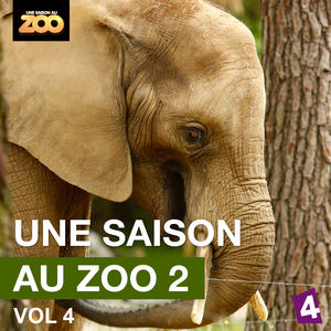 Une saison au Zoo, Saison 2, Vol. 4 torrent magnet