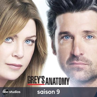 Telecharger Grey S Anatomy Saison 9 Vost 24 Episodes