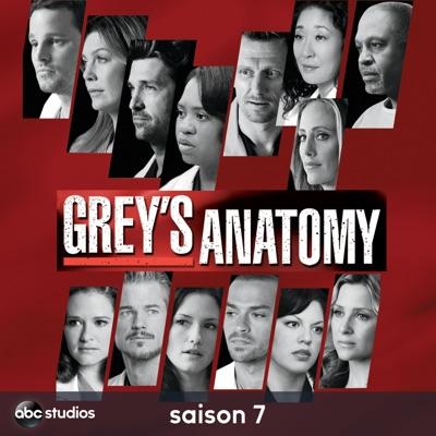 Télécharger Grey's Anatomy, Saison 7 [ 22 épisodes ]