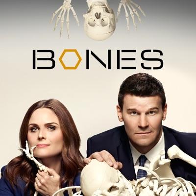 Bones, Saison 10 (VF) torrent magnet