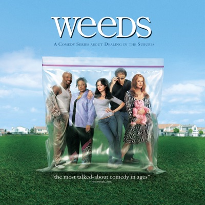 weeds saison 6 vf uptobox