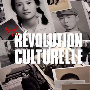 Ma révolution culturelle torrent magnet