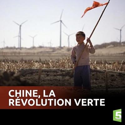 Chine, La révolution verte torrent magnet