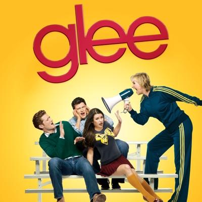 Glee, Saison 1 (VF) torrent magnet