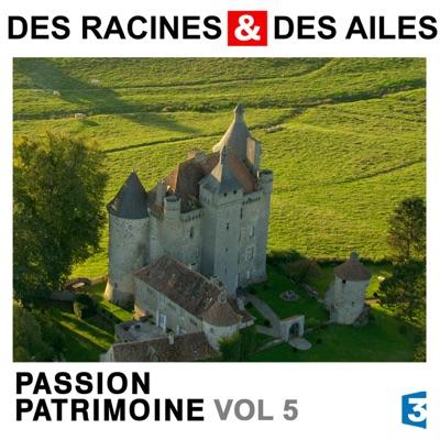 Des Racines & des Ailes, Passion patrimoine, Vol. 5 torrent magnet
