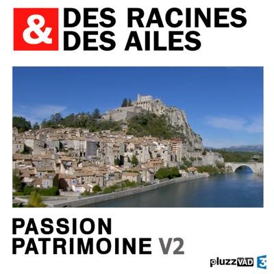 Des Racines & des Ailes, Passion patrimoine, Vol. 2 torrent magnet