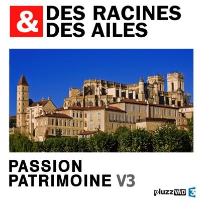 Des Racines & des Ailes, Passion patrimoine, Vol. 3 torrent magnet