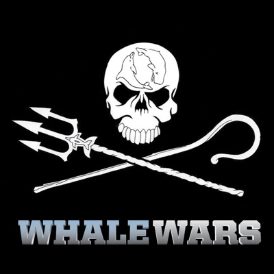 Whale Wars, Series 1 torrent magnet
