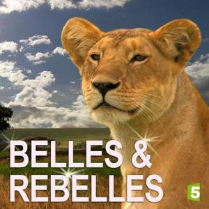 Belles & rebelles, Saison 2 torrent magnet