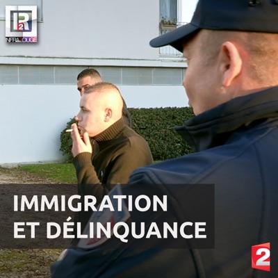 Immigration et délinquance torrent magnet