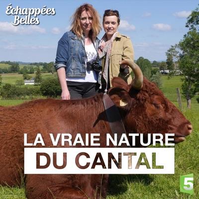 La vraie nature du Cantal torrent magnet