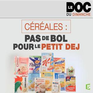 Céréales : pas de bol pour le petit dej torrent magnet