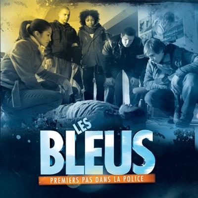 Les Bleus - Premiers pas dans la Police, Saison 3 torrent magnet
