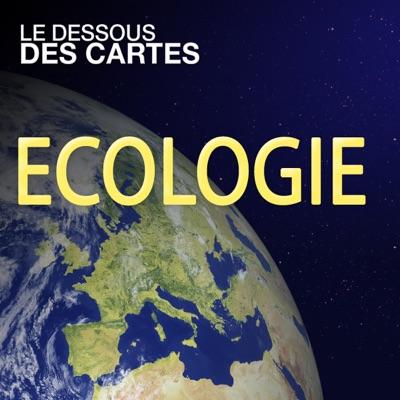 Le dessous des cartes - Ecologie torrent magnet