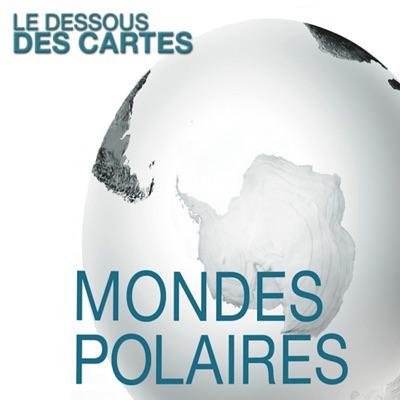 Le dessous des cartes - Mondes polaires torrent magnet