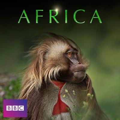Africa torrent magnet
