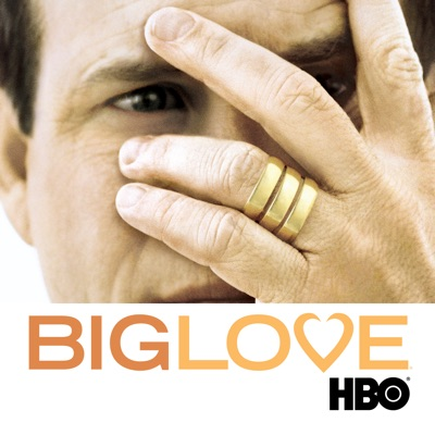 Télécharger Big Love, Season 1 [ 12 épisodes ]