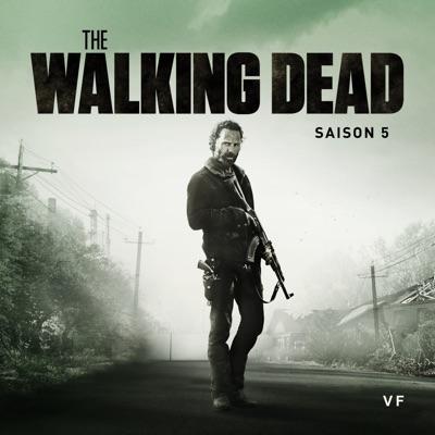 télécharger the walking dead saison 5 vf