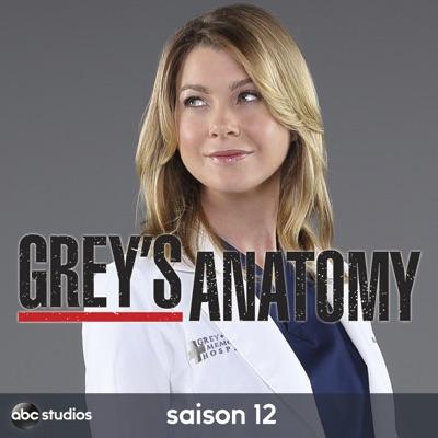 Grey's Anatomy, Saison 12 (VOST) torrent magnet