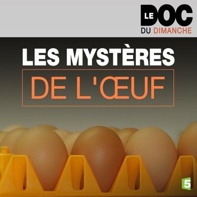 Les mystères de l'œuf torrent magnet