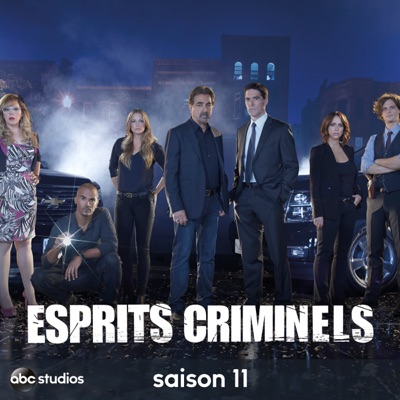 t l charger esprits criminels saison 11 vost 22 pisodes. Black Bedroom Furniture Sets. Home Design Ideas
