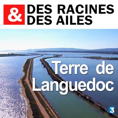 Terre de Languedoc torrent magnet