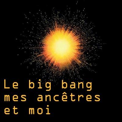 Le big bang, mes ancêtres et moi torrent magnet