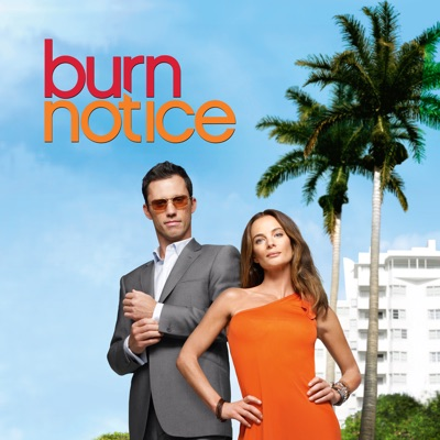 Burn Notice, Saison 2 torrent magnet