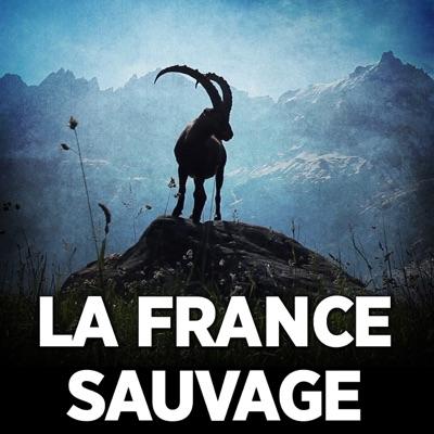 La France sauvage torrent magnet