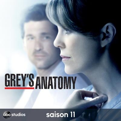 Télécharger Grey's Anatomy, Saison 11 [ 25 épisodes ]