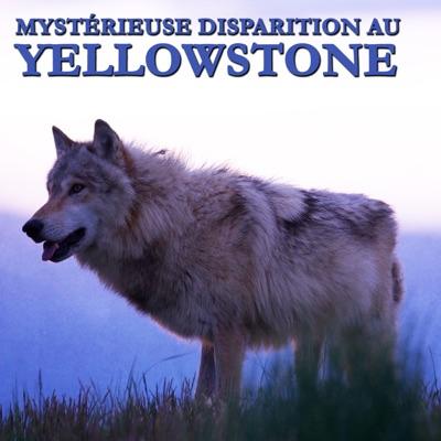 Mystérieuse disparition au Yellowstone torrent magnet