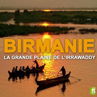Birmanie, la grande plaine de l'irrawaddy torrent magnet