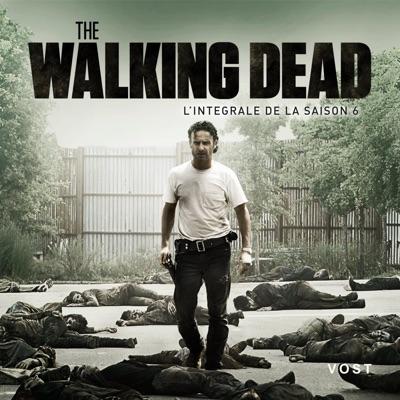 The Walking Dead, Saison 6 (VOST) torrent magnet
