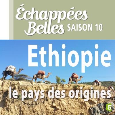 Ethiopie, le pays des origines torrent magnet