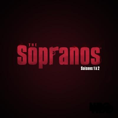 Les Soprano, Saisons 1 à 2 (VF) torrent magnet