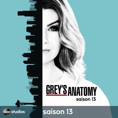 Grey's Anatomy, Saison 13 (VOST) torrent magnet