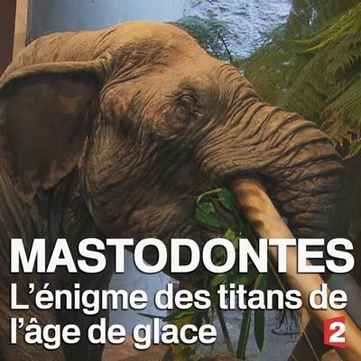 Mastodontes, l'énigme des titans de l'âge de glace torrent magnet