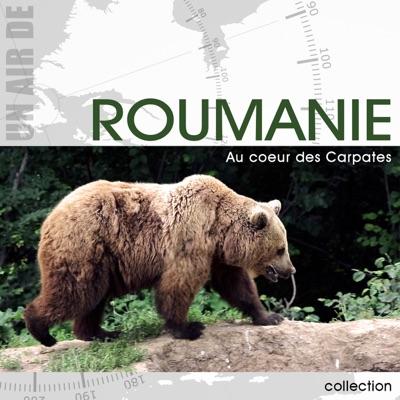 Roumanie, au cœur des Carpates torrent magnet