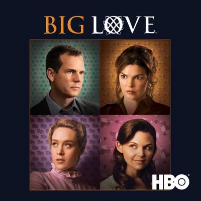 Big Love, Saison 3 (VF) torrent magnet